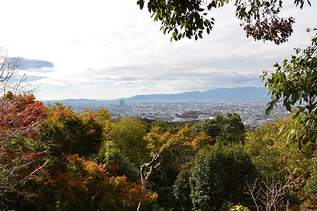 京都の街を一望する