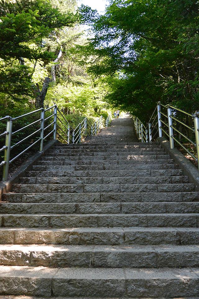 咲くや姫階段