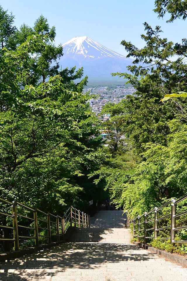 咲くや姫階段と富士山