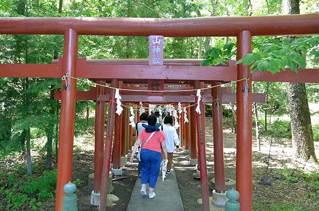 新屋山神社・奉納された鳥居群