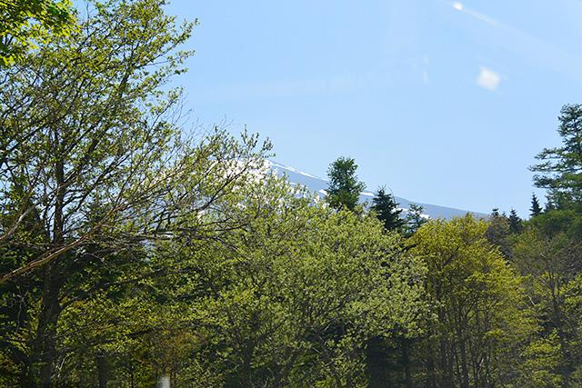 新屋山神社・奥宮への林道から見える富士山