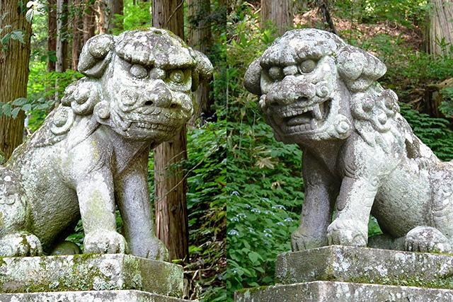 宝光社の面白い顔の狛犬