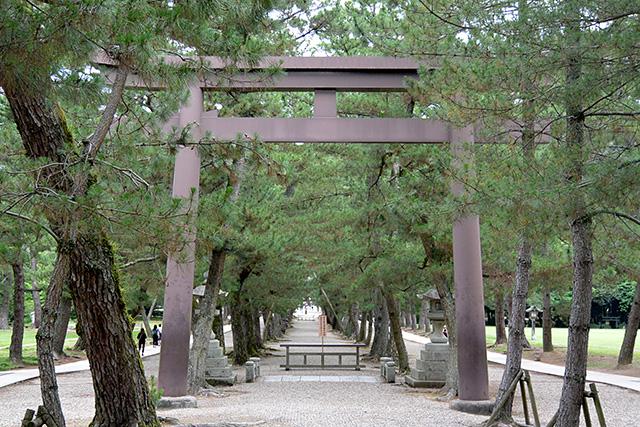 第三の鳥居・松の参道