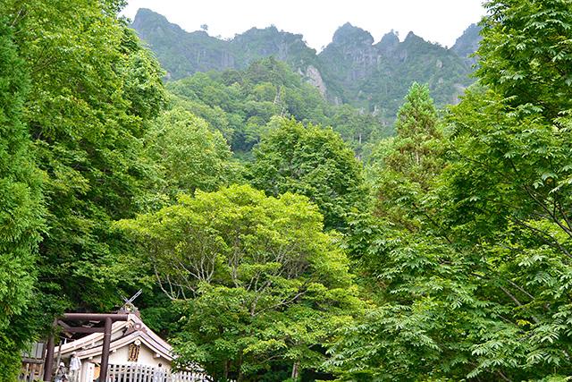 奥社の背景はギザギザ峰の戸隠山