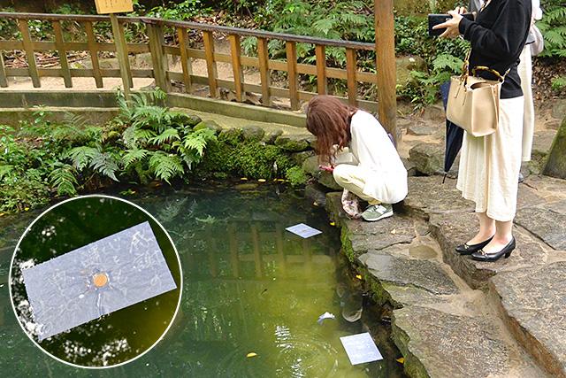 八重垣神社・鏡の池(姿見の池)と占い