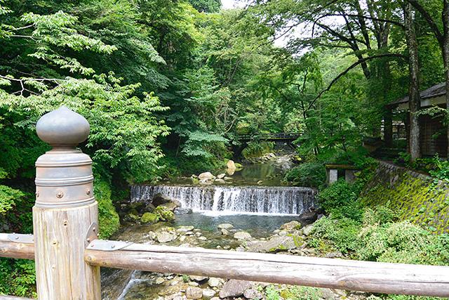 古峯園(こほうえん)の橋からの眺め