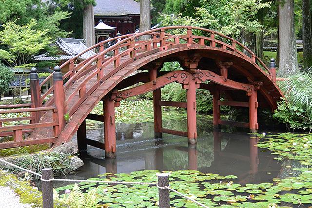 金剛證寺・連間の池