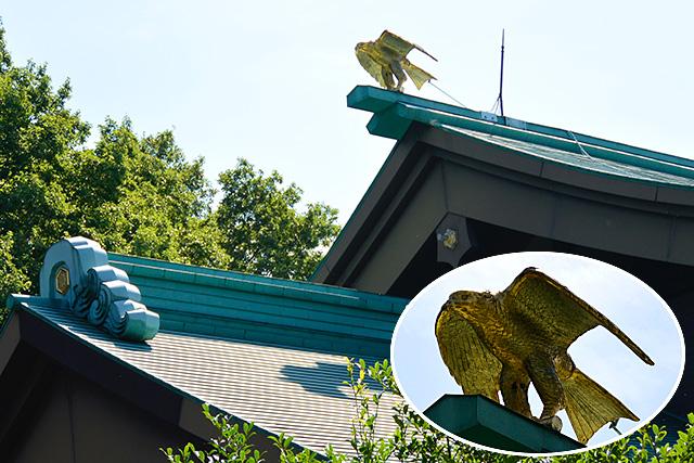 拝殿の屋根の金色のトンビ