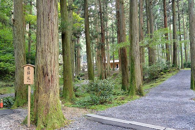 御岩神社・参拝道