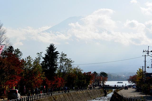 河口湖・もみじ回廊と富士山