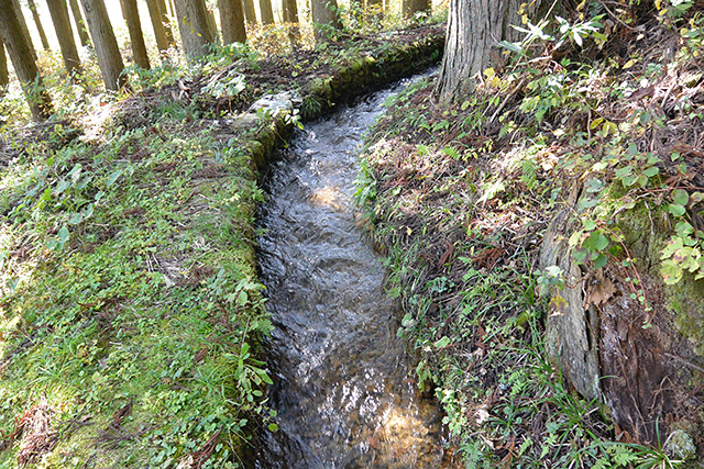 高倉神社の手水舎の水路