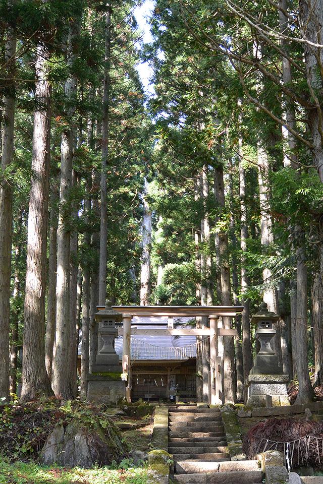 高倉神社・第三の鳥居と拝殿