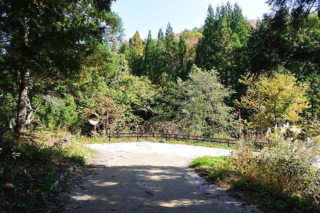 桜木姫のお墓へ