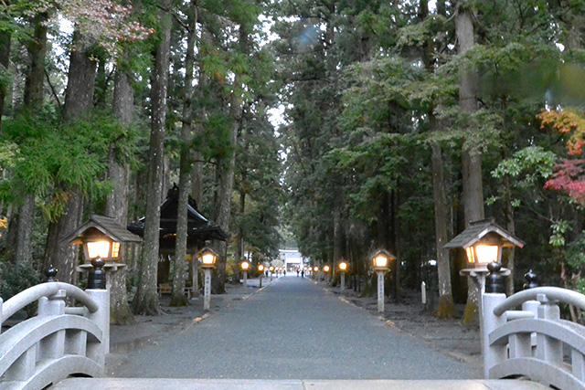 小國神社・松並み木の参道