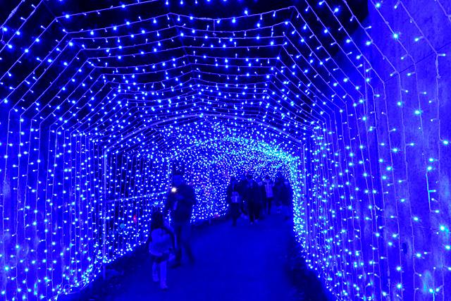 さがみ湖イルミニオン・光の大トンネル