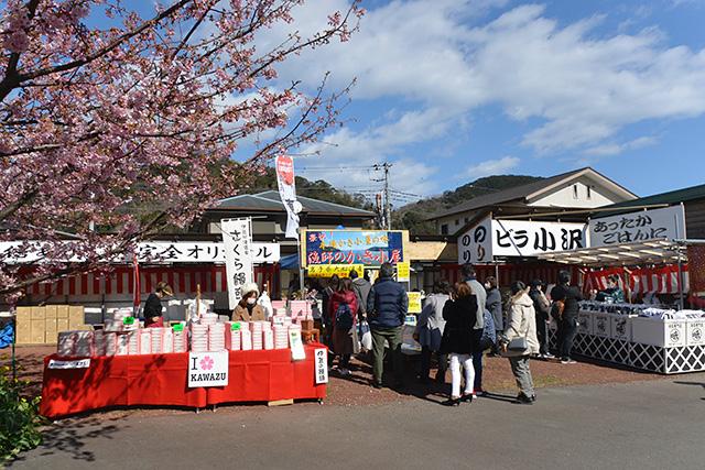 河津桜の屋台