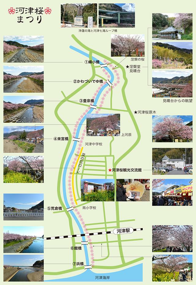 河津桜まつり地図