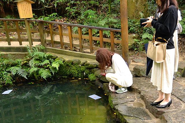 八重垣神社奥の院・佐久佐女の森・鏡の池