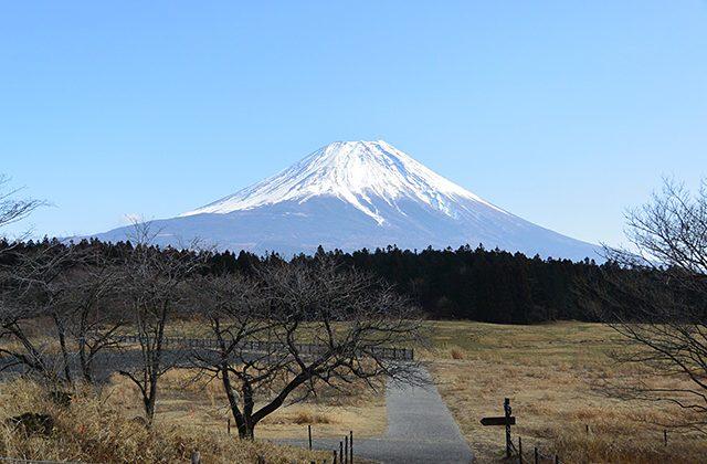 一日で、富士山・浅間神社五社巡り