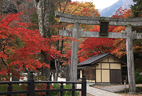 古峯神社と日光二社一寺バスツアー