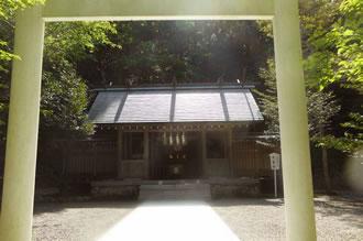 安房神社&鶴谷八幡宮参拝ツアー画像