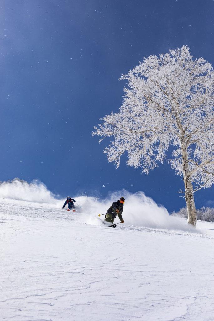 斑尾高原スキー場のイメージ8