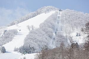 斑尾高原スキー場のイメージ9