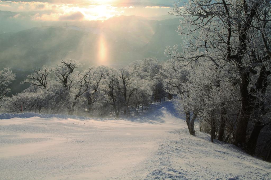 めいほうスキー場のイメージ5
