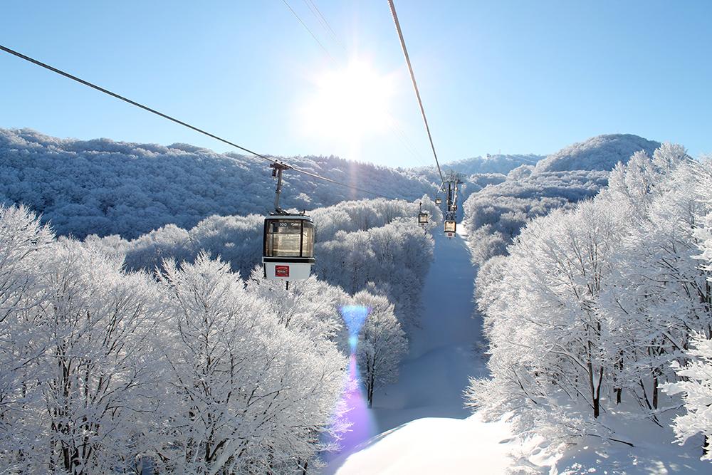 野沢温泉スキー場のマイカープランイメージ2