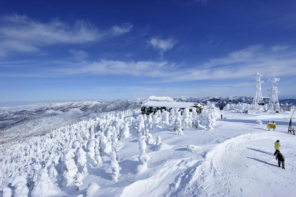 志賀高原スキー場のマイカープランイメージ8
