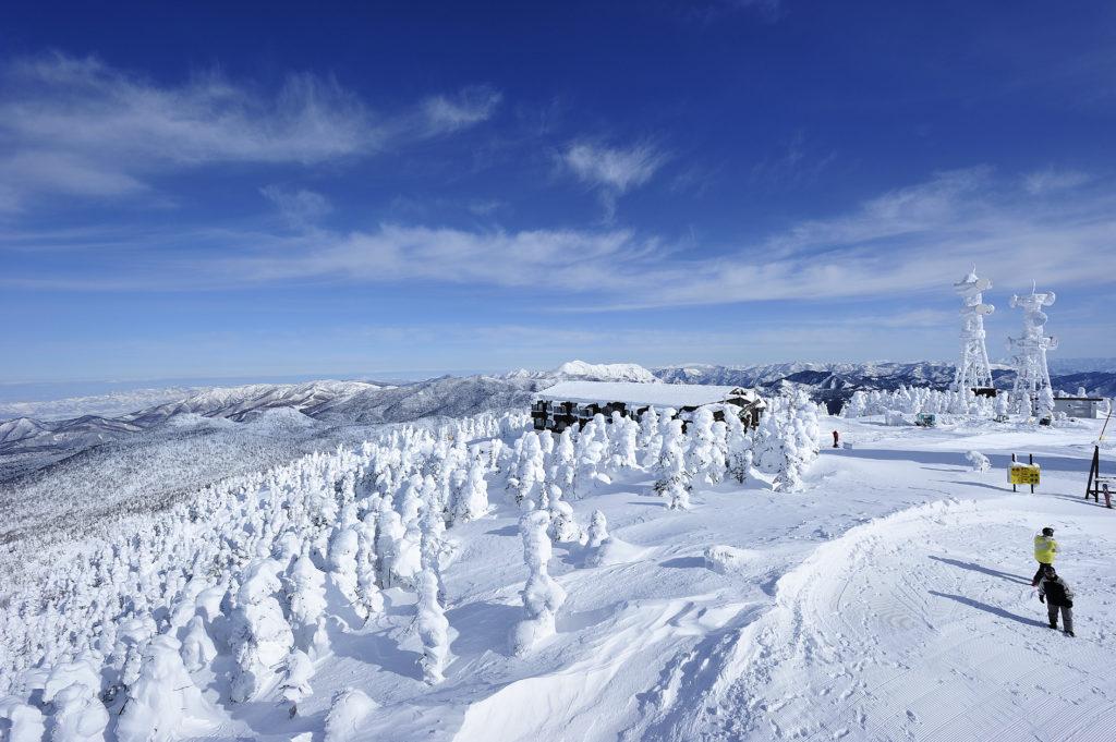 志賀高原スキー場のイメージ8
