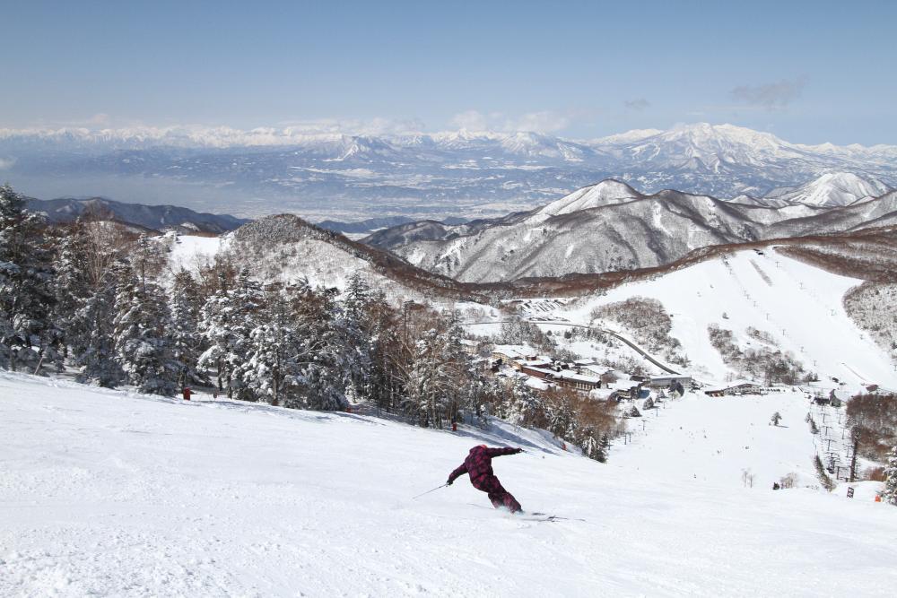 志賀高原 大人のスキー2.5泊 ホテル金栄宿泊の写真