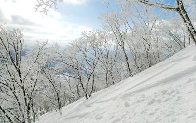 よませ温泉スキー場のイメージ1