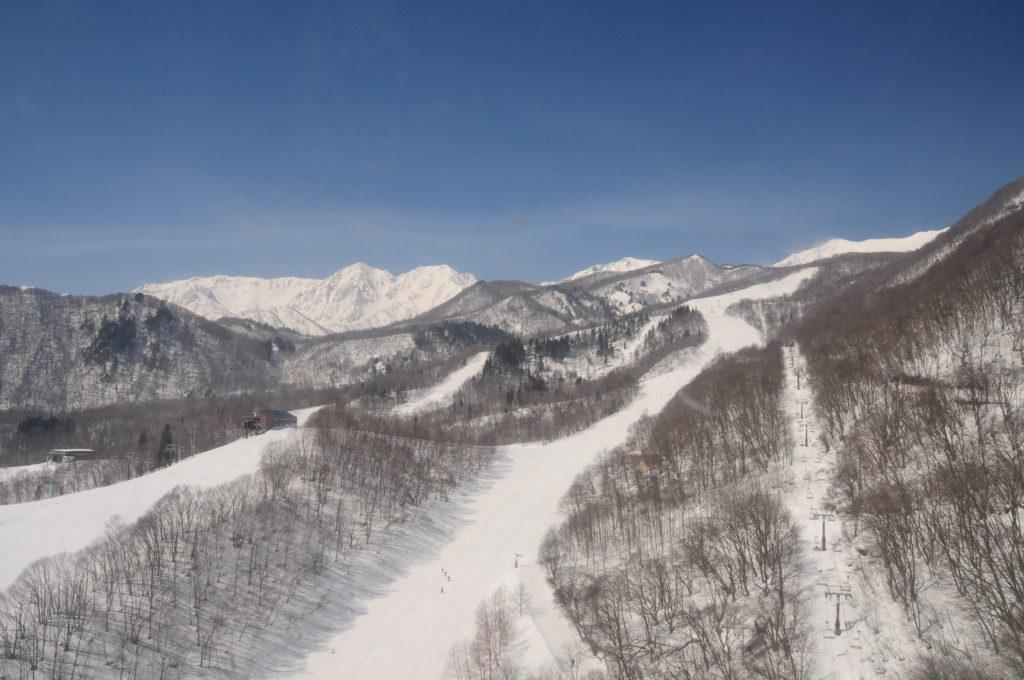 栂池高原スキー場のイメージ1