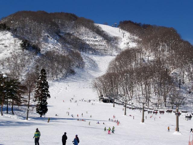 八方尾根スキー場のマイカープランイメージ13