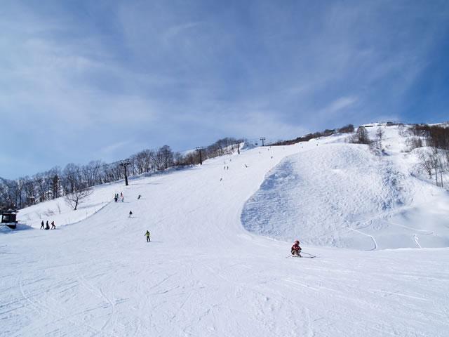 八方尾根スキー場のマイカープランイメージ9