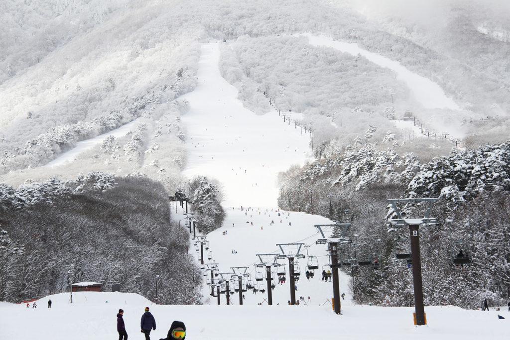いいづなリゾートスキー場のイメージ1