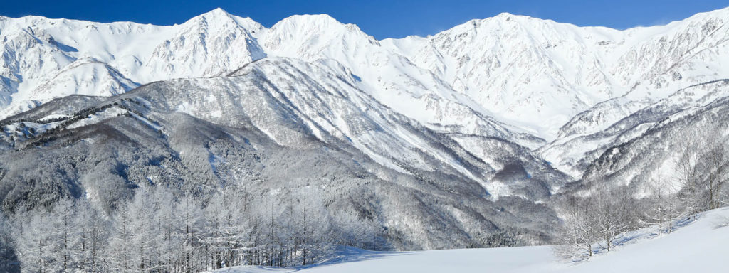 白馬岩岳スノーフィールドのイメージ1