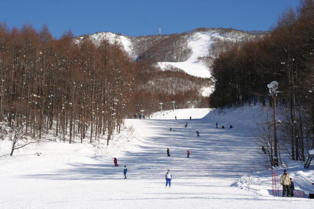 会津高原たかつえスキー場のイメージ3