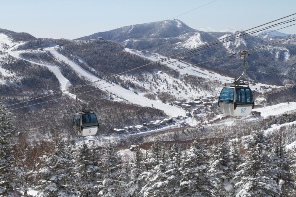 志賀高原 大人のスキー1.5泊 ホテル金栄宿泊の写真
